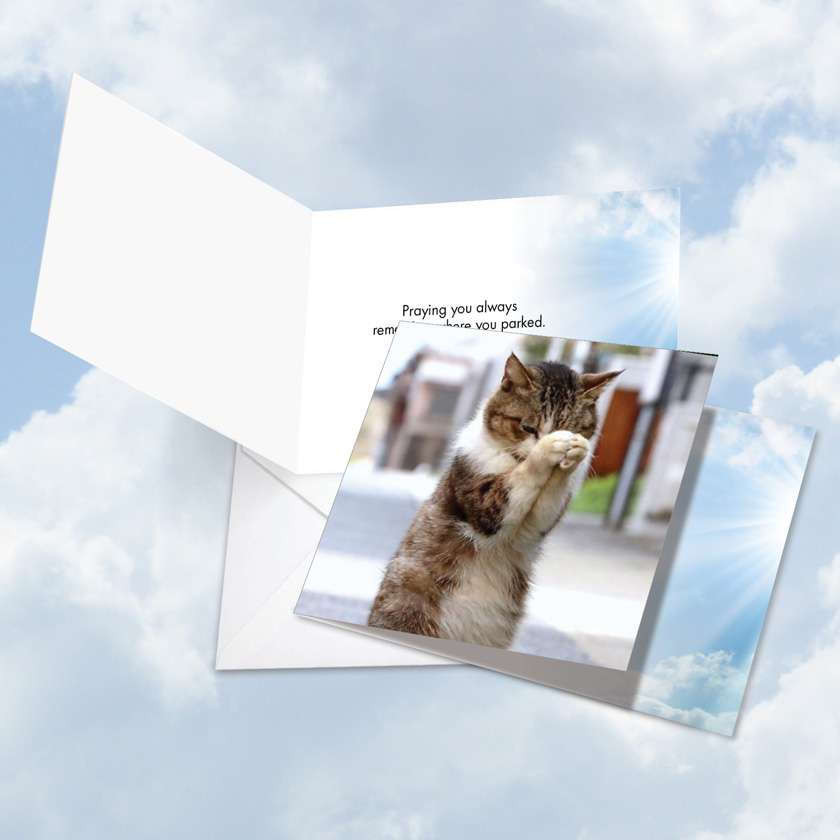 Paws and Prayers Parked: Hysterical All Occasions Square-Top Greeting Card