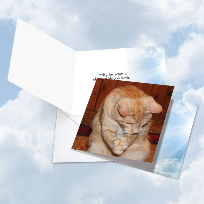 Paws and Prayers Remote: Hilarious All Occasions Square-Top Paper Greeting Card