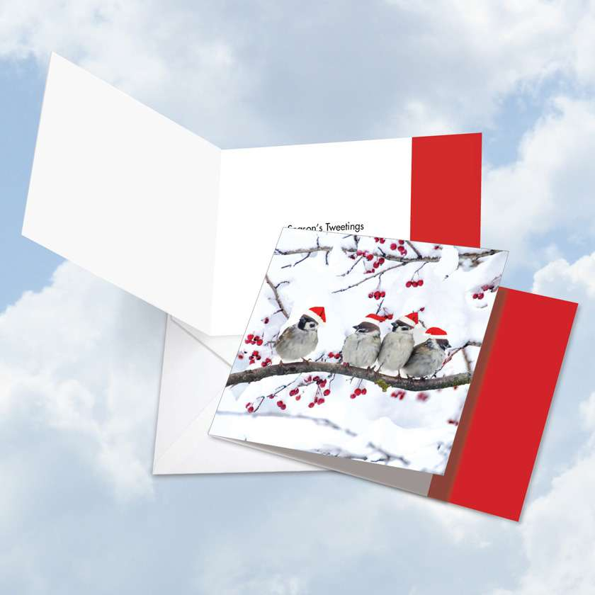 Christmas for the Birds: Creative Christmas Square-Top Printed Card