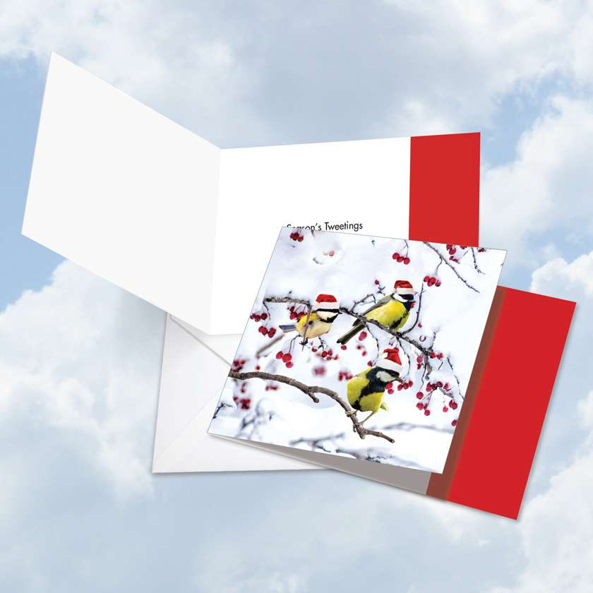 Christmas for the Birds: Stylish Christmas Square-Top Paper Greeting Card
