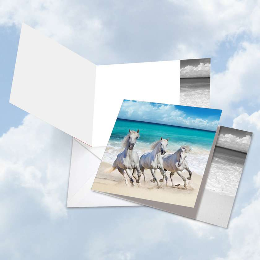Gallops and Greetings Blank Square Card