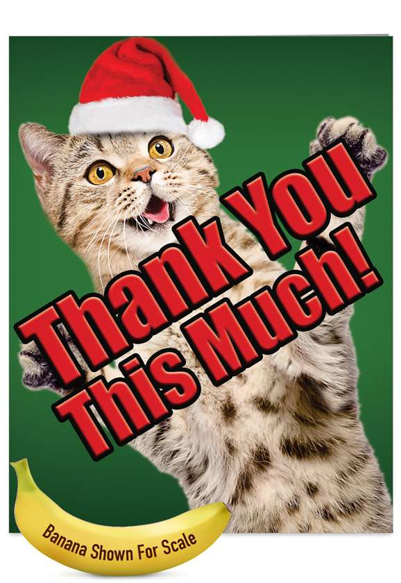 Cat Big Thanks: Stylish Christmas Thank You Jumbo Greeting Card