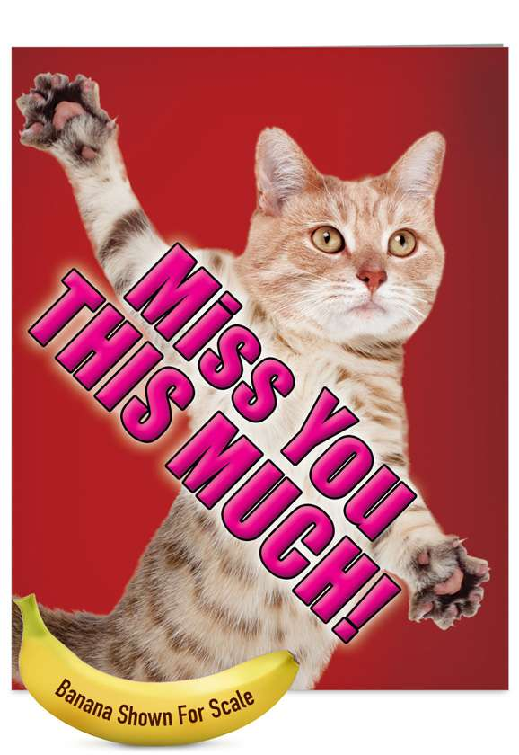 Miss You This Much-Cat: Humorous Miss You Jumbo Printed Card