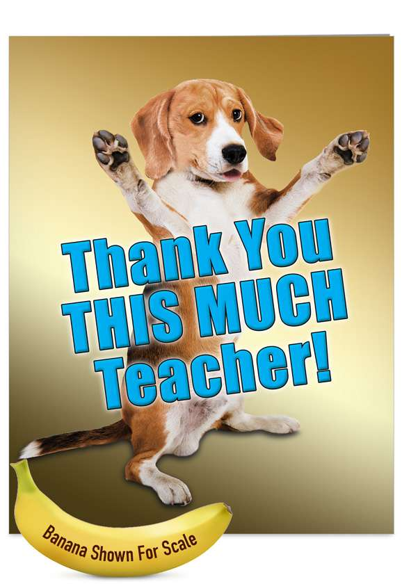 Thank You This Much Teacher-Dog: Funny Teacher Thank You Jumbo Greeting Card