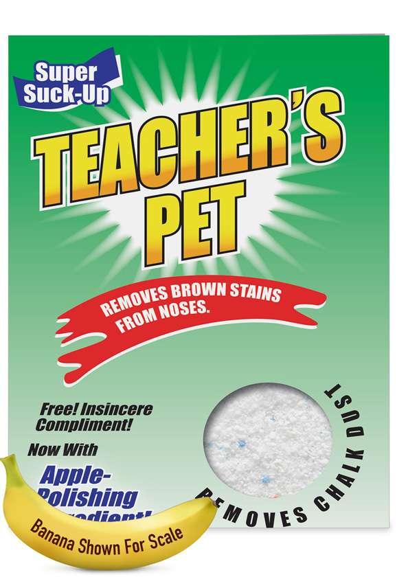 Teacher's Pet - Teacher TY: Hysterical Teacher Thank You Large Greeting Card