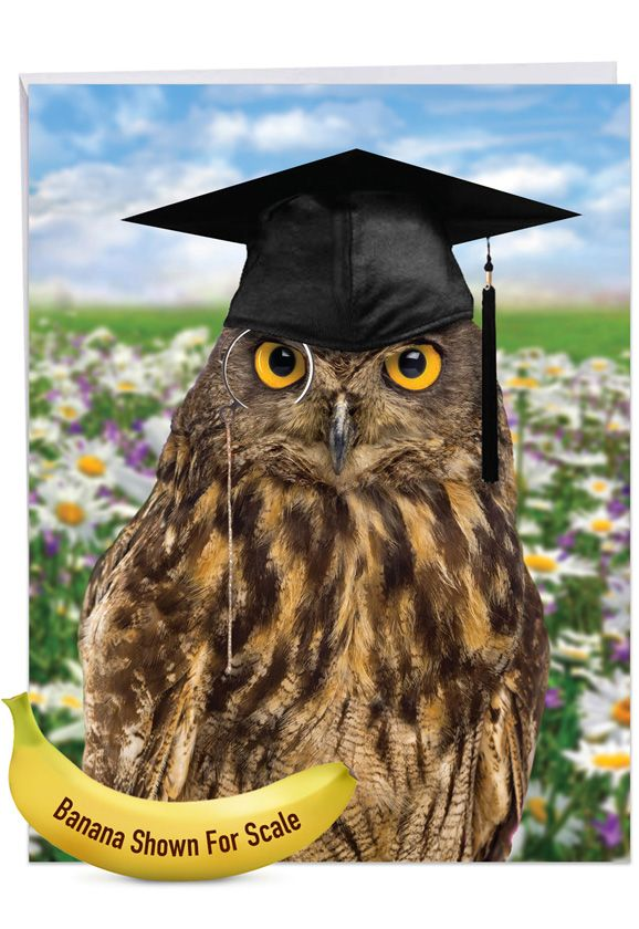 Wise Old Owl: Humorous Graduation Over-sized Paper Greeting Card