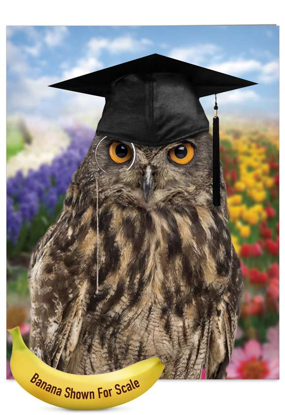Wise Old Owl: Funny Graduation Thank You Jumbo Paper Greeting Card