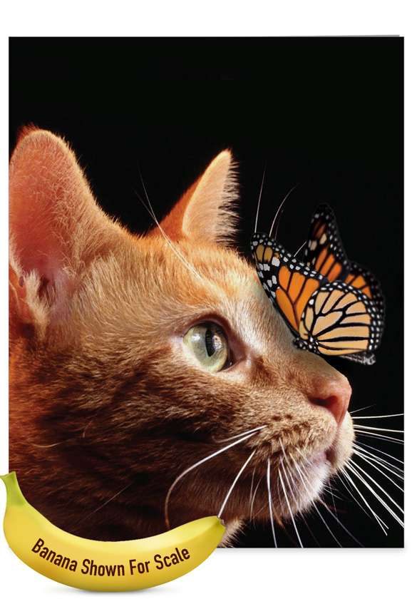 On The Nose Tabby Cat - Teacher TY: Creative Teacher Thank You Jumbo Printed Greeting Card