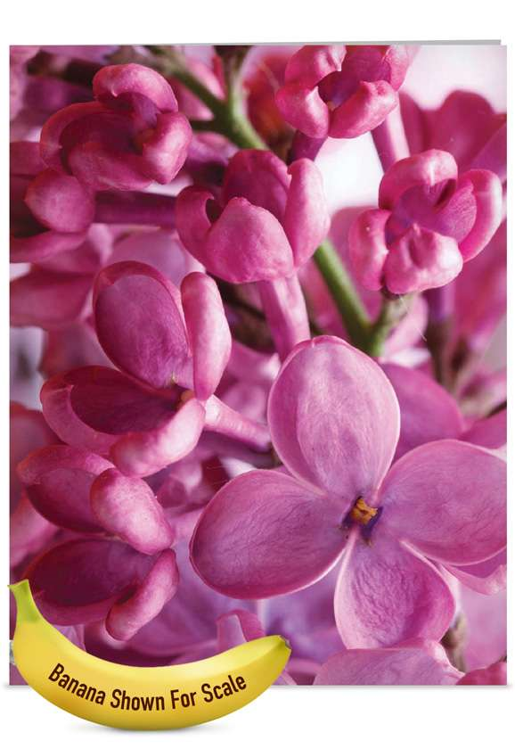The Color Purple: Stylish Mother's Day Jumbo Paper Card