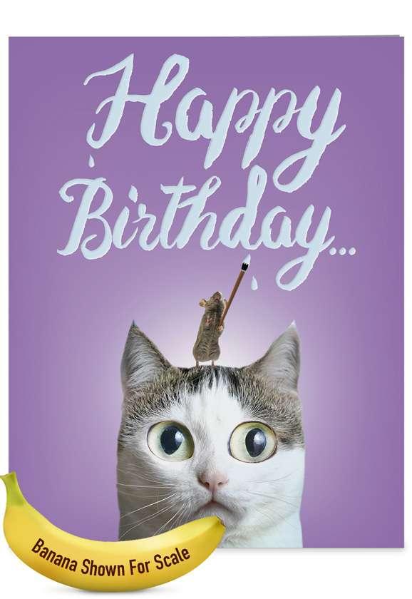 catsent greetings creative birthday giant printed card