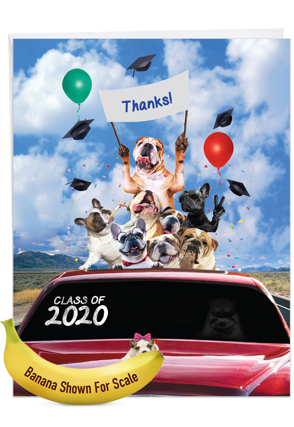 Bulldog Mascot - 2020: Stylish Graduation Thank You Extra Large Paper Card