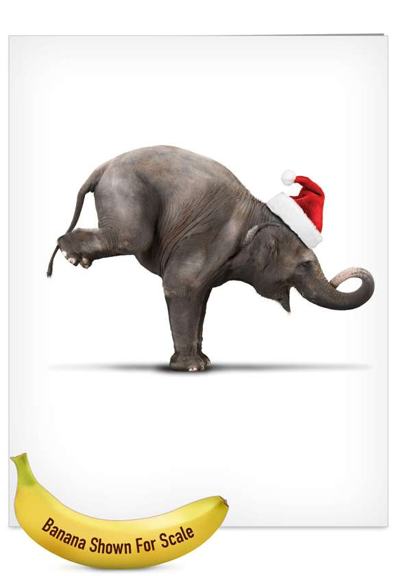 Yuletide Zoo Yoga: Creative Christmas Jumbo Greeting Card
