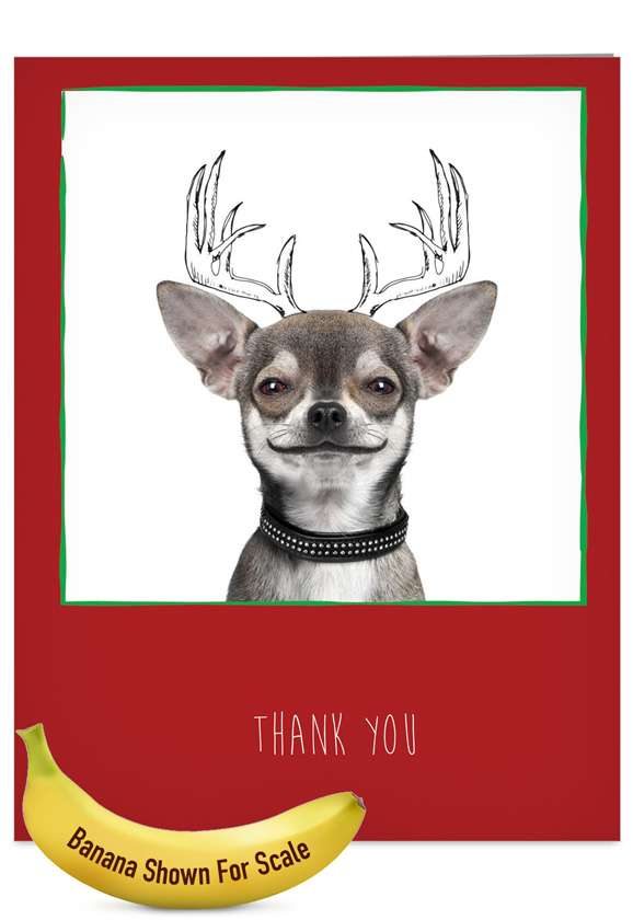 Dogs & Doodles: Creative Blank Jumbo Paper Greeting Card