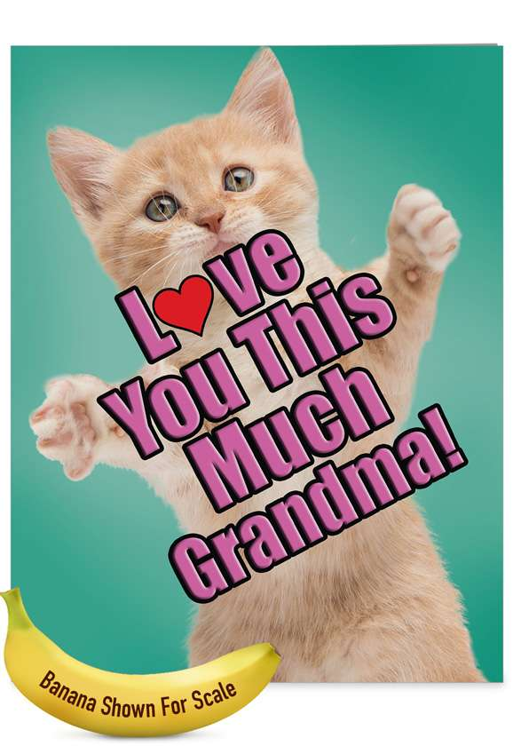 Cat Love You This Much Grandma: Hilarious Mother's Day Grandma Jumbo Printed Greeting Card