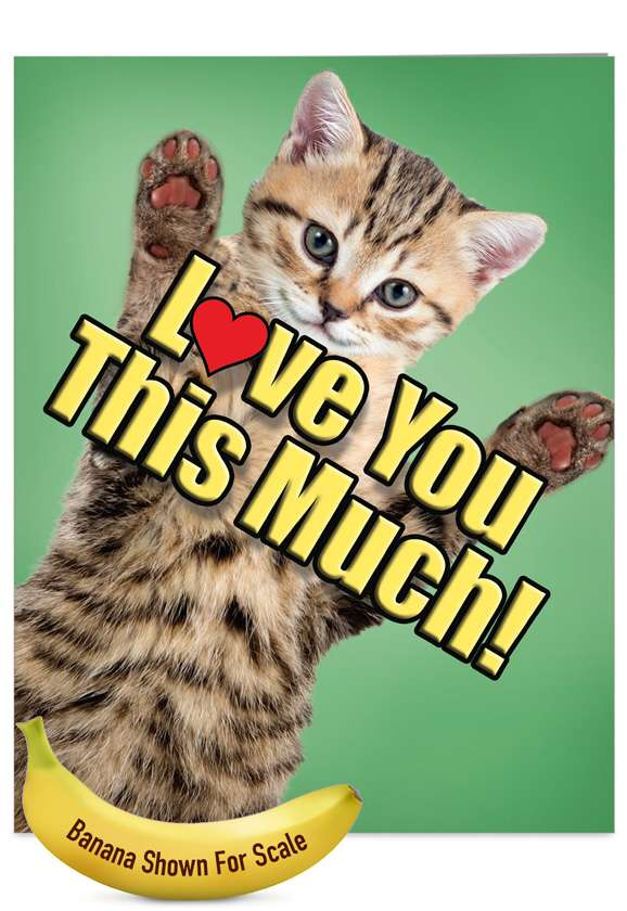 Cat Love You This Much: Creative Father's Day Jumbo Greeting Card