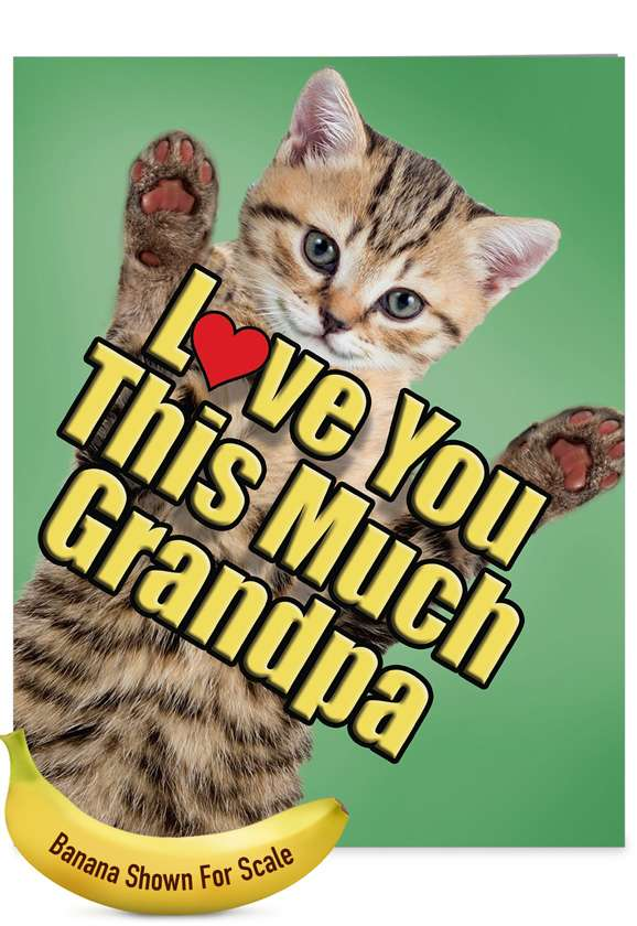Cat Love You This Much Grandpa: Humorous Father's Day Grandpa Big Card