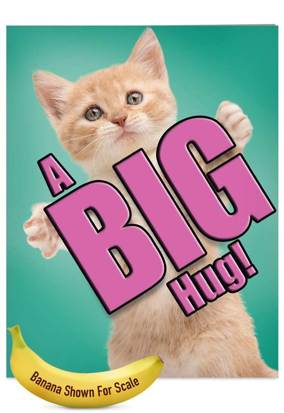 Cat A Big Hug: Stylish Miss You Jumbo Paper Greeting Card