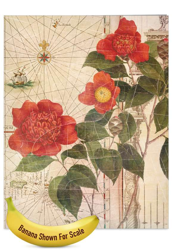 Secret Garden: Creative Mother's Day Jumbo Greeting Card