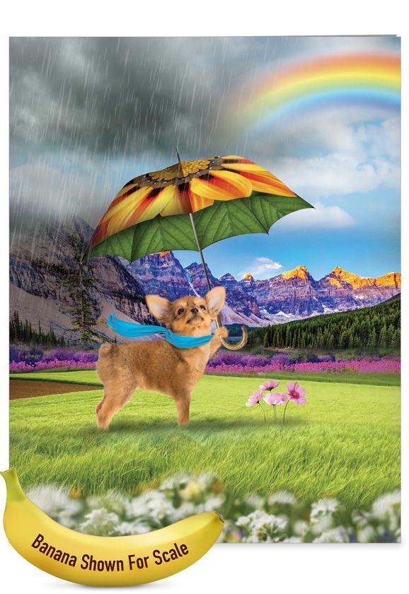 Raining Dogs: Stylish All Occasions Extra Large Paper Card