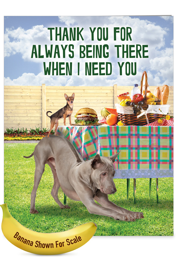 Dog Assistance: Funny Thank You Big Card
