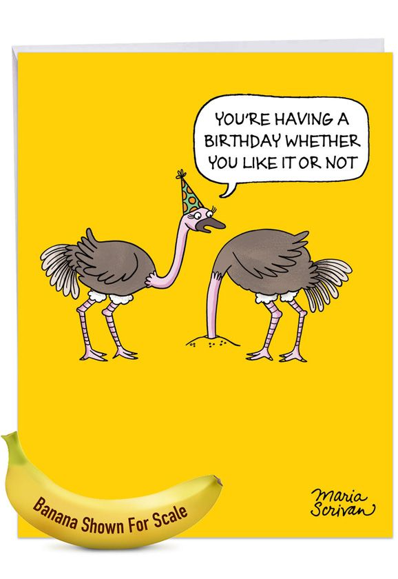 Ostrich Party: Hilarious Birthday Jumbo Printed Greeting Card