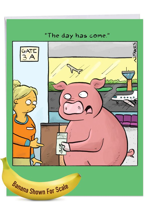 When Pigs Fly: Humorous Congratulations Extra Large Paper Card
