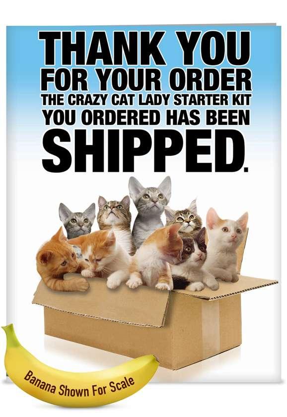 Cat Lady Starter Kit: Funny Blank Jumbo Printed Card