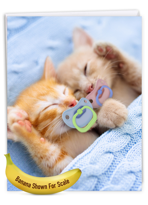 Cat Pacifiers - Kittens: Artistic Birthday Big Card