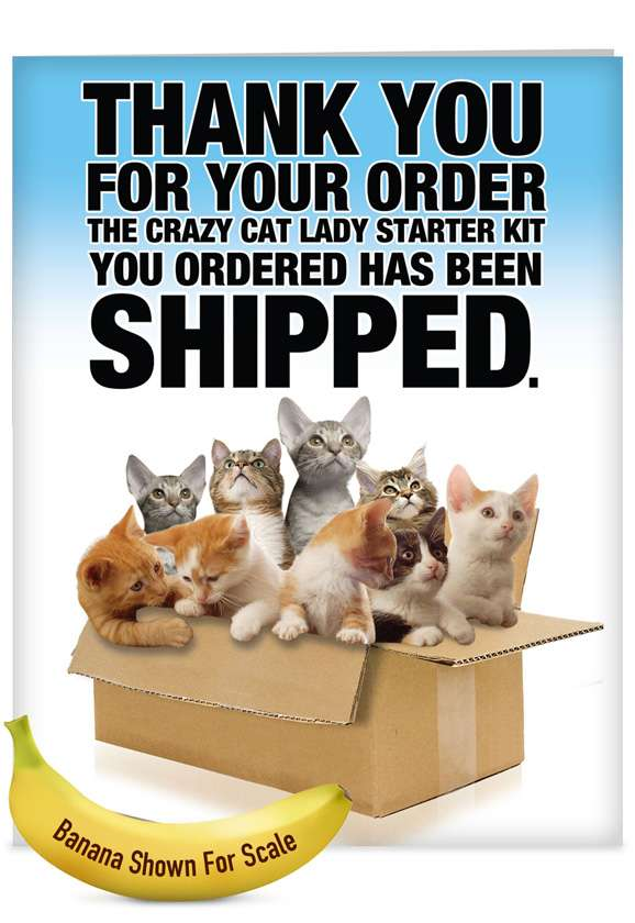 Crazy Cat Lady Starter Kit: Hysterical Friendship Jumbo Paper Greeting Card