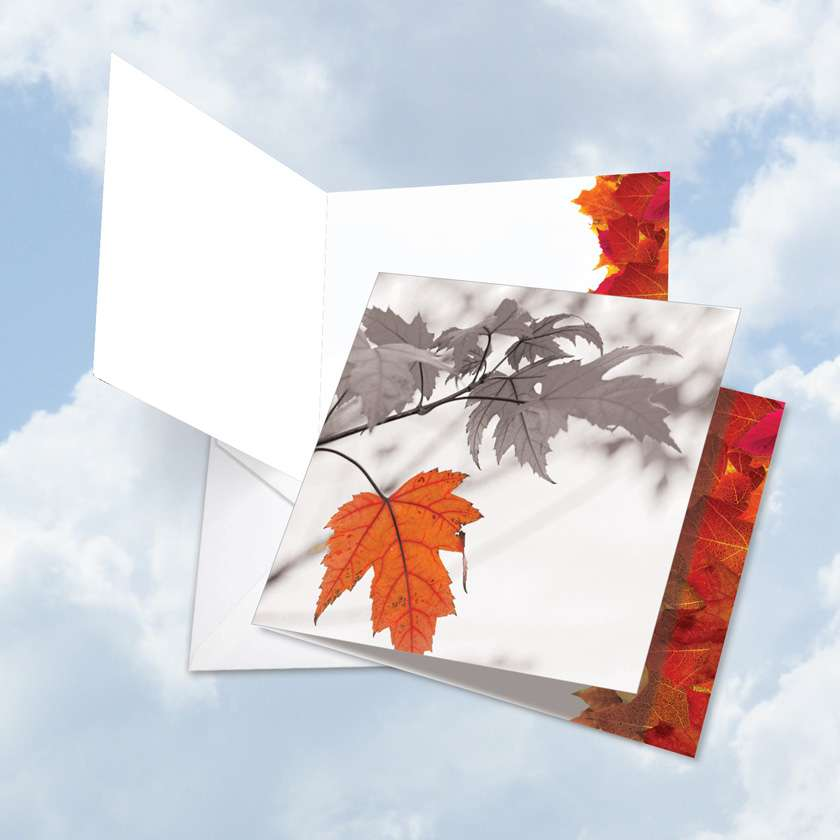 Autumn Leaf: Stylish Miss You Jumbo Square-Top Paper Greeting Card
