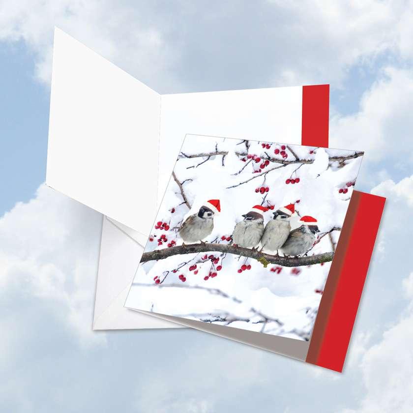 Christmas for the Birds: Stylish Christmas Jumbo Square-Top Printed Greeting Card